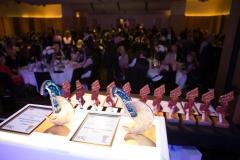 Underlines_Stars_Awards_2014_357